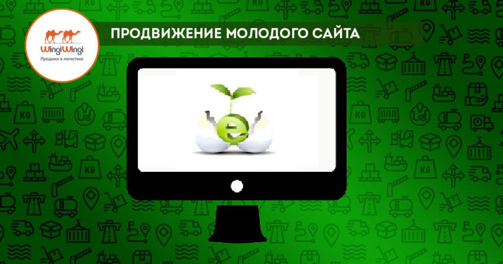 продвижение новых сайтов